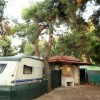 Village & Camping Pineto Beach foto 5