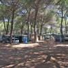 Camping Village il Sole foto 41