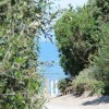 Orbetello Camping Village foto 3