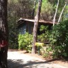 Camping Village il Sole foto 22