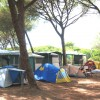 Camping Village il Sole foto 29