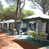 Camping Village il Sole foto 30