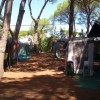 Camping Village il Sole foto 31