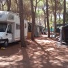 Camping Village il Sole foto 33