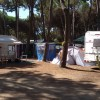 Camping Village il Sole foto 34