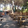 Camping Village il Sole foto 7