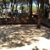 Camping Village il Sole foto 9