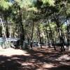 Camping Vittoria