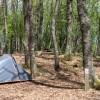 Orlando in Chianti Camping Village