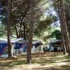 Camping Selema foto 6