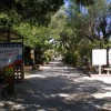 Camping Forte Village foto 4