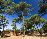 Camping Puntala