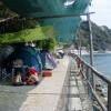 Parco Vacanze Camping Smeraldo foto 3