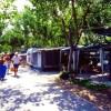 Camping Metauro foto 8