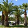Camping Onda Azzurra foto 28