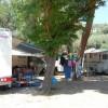 Villaggio Camping Nettuno foto 17