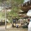 Porto Cesareo Camping foto 13