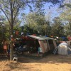 Camping Barco Reale foto 14