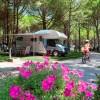 Camping Village Scarpiland foto 9
