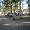 Camping Orlando in Chianti foto 16