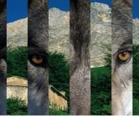 Dal 26 ottobre al 2 novembre va in scena l'Abruzzo