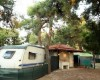 Pineto Beach Village & Camping foto 5