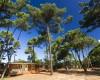 PuntAla Camp & Resort foto 1