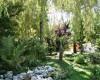 I Tre Moschettieri Camping Village foto 7