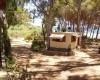Camping Marina foto 1