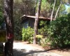Camping Village il Sole foto 42