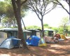 Camping Village il Sole foto 49