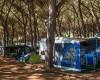 Camping Marina Chiara foto 19