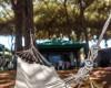 Camping Marina Chiara foto 21