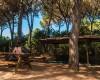 Camping Marina Chiara foto 22