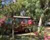 Camping Village Baia Falcone foto 9