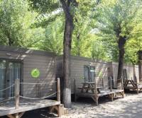 Jolly Camping Village