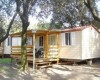 Camping Internazionale di Castelfusano foto 8