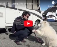 Camper Tutorial - Viaggiare con il cane