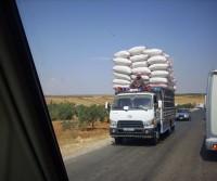 Siria e Giordania