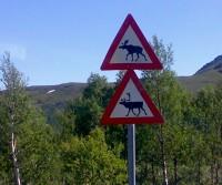 2021 - Re-open Norway