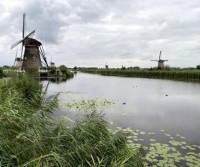 Olanda 2021