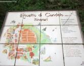 Piemonte 2021  foto 8