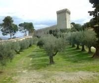 Umbria e riviera del Conero