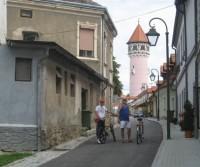 Slovenia, Serbia, Bosnia Herzegovina, Croazia 2010