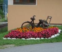 Cortina e Austria