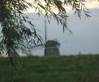 Olanda Agosto 2014