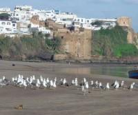 Da Ceuta a Sidi Ifni