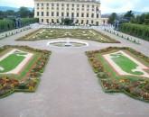 Vienna E Le Rive Del Danubio  foto 1