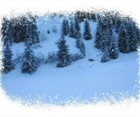 Natale in Alsazia 2016