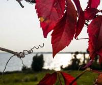 A spasso per il lago di Garda